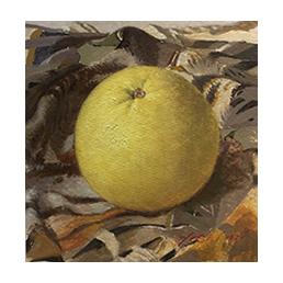 takanashi_grapefruits17*17_gr